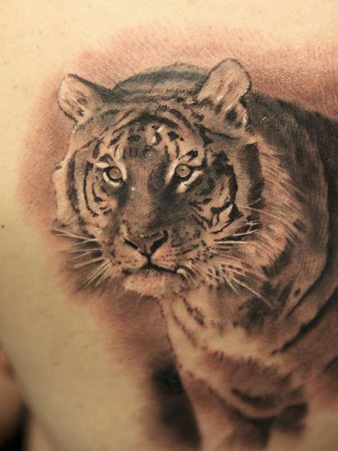 tatouage avec un tigre inkage. Black Bedroom Furniture Sets. Home Design Ideas