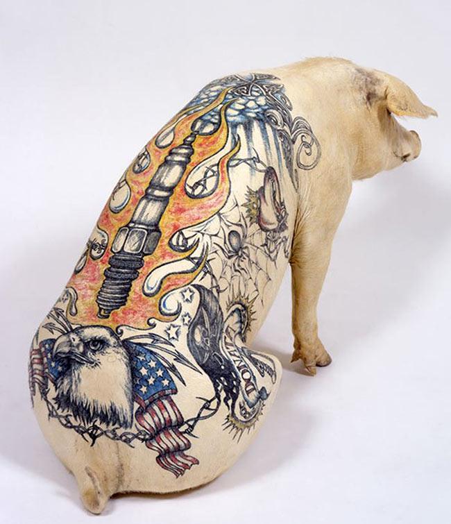 un-artiste-realise-des-tatouages-sur-des-cochons-pour-en-faire-des-oeuvres-d-art-2